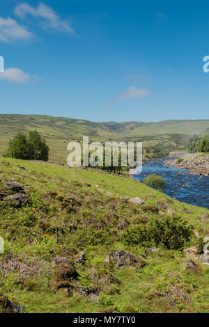 The Pennine Way long distance footpath in Upper Teesdale, alongside the river Tees, looking towards Cronkley Fell, in sunshine with copy space - Stock Image