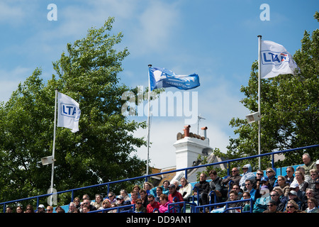 LTA and Aegon flag flutter in the wind above spectators on a breezy summers day at the Aegon International tennis - Stock Image