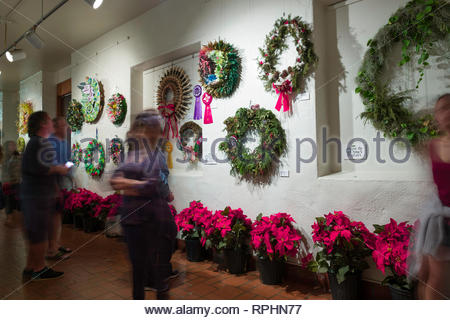 Christmas wreaths in various styles on display inside the Honolulu Hale during the Honolulu City Lights Christmas celebration, Honolulu, Oahu, Hawaii, - Stock Image