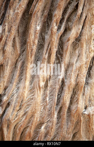 Carved Wood Grain - Stock Image