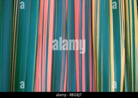 Phormium leaves arranged in an abstract pattern - Stock Image