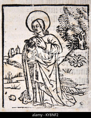 Illustration of an apostle from a Title Page in William Tyndale's 1538 edition of the English New Testament, - Stock Image