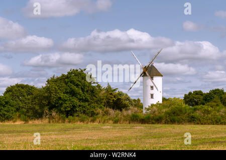 old windmill standing in a small forest in Saint Lyphard (France) - Stock Image