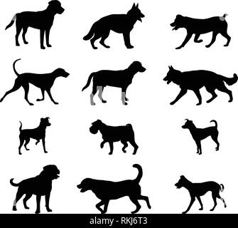 dogs silhouettes collection 2 - vector - Stock Image