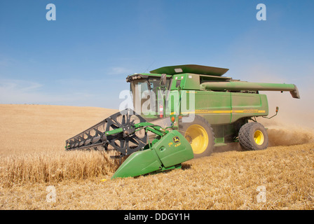 Time for the barley harvest near Spokane, Washington State, USA. - Stock Image