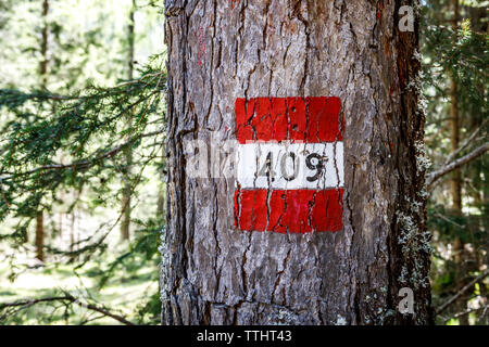 Picture of a '409' trail sign painted on a tree in Cortina D'Ampezzo, Dolomites, Italy - Stock Image