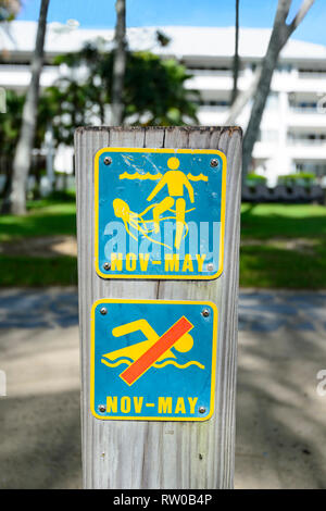 No swimming warning sign because of marine stingers between November and May, Palm Cove, Far North Queensland, QLD, FNQ, Australia - Stock Image