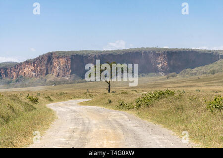 Acacia tree by the dusty road and cliffs in background, Hells Gate National Park, Kenya - Stock Image
