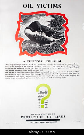 1960s RSPB information poster about oil pollution in marine habitats-designed and drawn by Charles Tunnicliffe - Stock Image