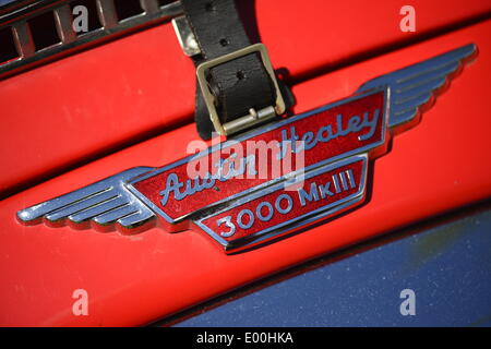 Floral Park, New York, U.S. 27th April, 2014. A red 1960 Austin Healey 3000 MkIII, with detail of emblem and leather buckle shown, is exhibited at the 35th Annual Antique Auto Show at Queens Farm. Credit:  Ann E Parry/Alamy Live News - Stock Image