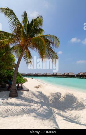 Maldives Beach - the beach, Veligandu island, Rasdhoo atoll, the Maldives Asia - Stock Image