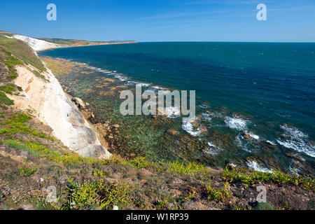 wave,cut,platform,chalk,cliffs,Compton Bay, Freshwater, Isle of Wight, England,UK, - Stock Image