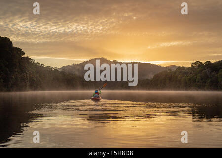Single kayaker paddling down a still river at sunrise, through mountains and rainforest with beautiful reflections in the water - Stock Image