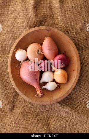Bowl of Onion & Shallots - Stock Image