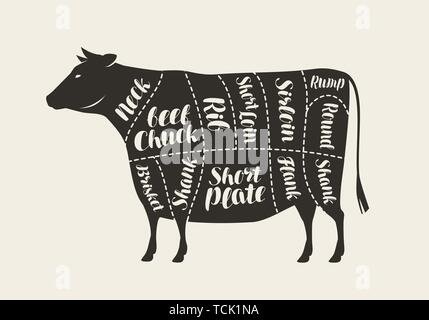 Cuts of meat, cow. Butcher shop, beef vector illustration - Stock Image