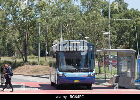 A New South Wales bus stopped at the Riley T-Way bus stop in the Sydney suburb of Kellyville, NSW Australia - Stock Image