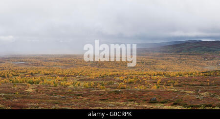 Approaching rain over autumn mountain landscape near Serve hut, Kungsleden trail, Lapland, Sweden - Stock Image
