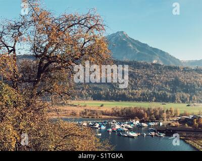 Trees, mountain and boats in a lake in Switzerland - Stock Image