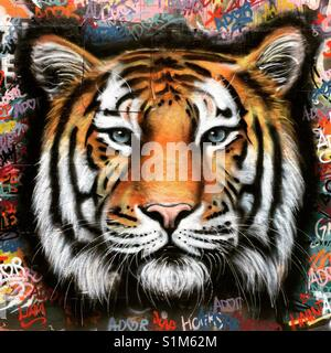Street art of a tiger - Stock Image