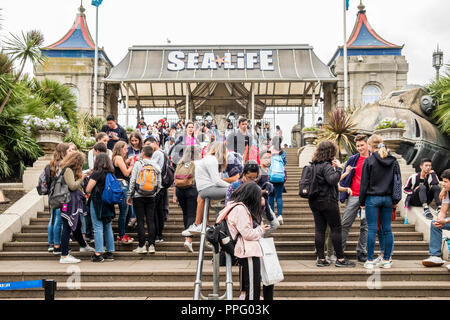Students in a tour group outside Sea Life, Brighton, Sussex, England, GB, UK - Stock Image