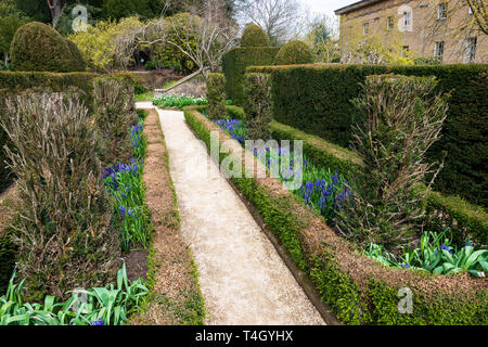 yew garden at Belsay Hall, an early 19th Century mansion house, in Northumberland, England, UK - Stock Image