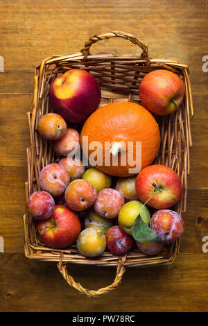 Colorful freshly picked plums Mirabelles red yellow green apples orange pumpkin in wicker basket on aged wood background. Thanksgiving autumn fall har - Stock Image