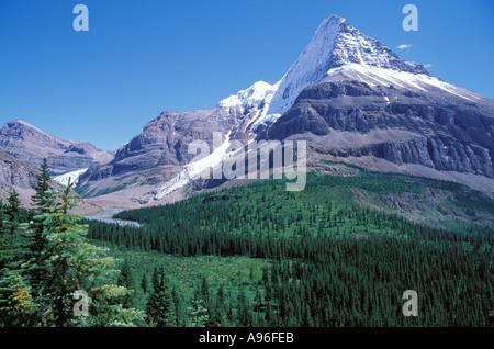 Mount Robson - Stock Image