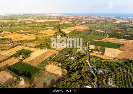 top view of crop fields near of the Mediterranean sea in Tarragona, green field agriculture industry aerial view - Stock Image