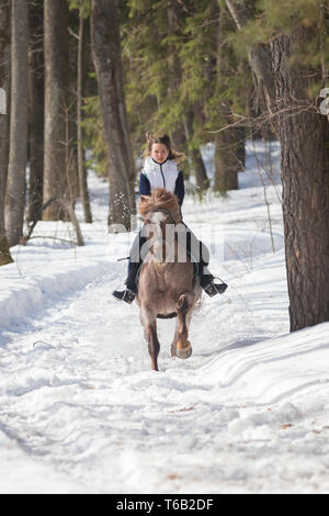 A young woman in white jacket riding a horse on a snowy ground - Stock Image