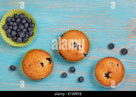 blueberry muffins on blue wooden background . view from above - Stock Image