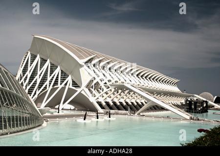 Spain Valencia City of sciences and arts by architect Santiago Calatrava museum of science  - Stock Image