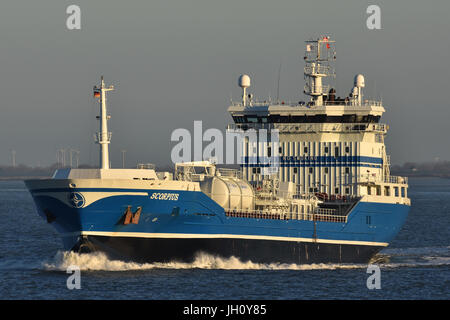 Chemical Oil Products Tanker Scorpius - Stock Image