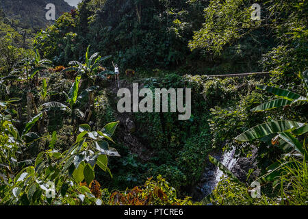 Travel arond jamaica , wild nature and local life and landscape - Stock Image