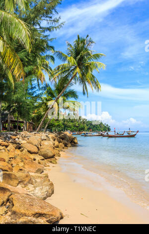 Palm trees on tropical Bang Tao beach, Phuket, Thailand - Stock Image