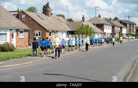 School children crocodile walking back to school from outing Milton 2019 - Stock Image