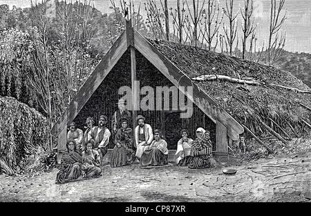 Maori hut, New Zealand, historic engraving from 19th Century, Eine Hütte der Maori, Neuseeland, historischer - Stock Image