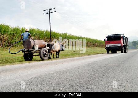 Cuba, Pinar del Rio Region, Viñales (Vinales) Area. Highway A4. Horse-drawn Cart using a Highway - Stock Image