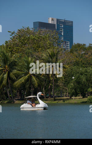 Swan pedal boat in Bangkok Lumpini park, Thailand - Stock Image