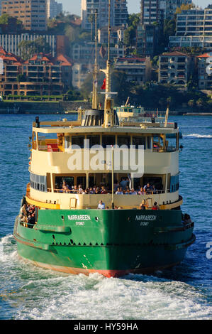 Manly Ferry: 'Narrabeen', one of the famous ferries to the beach suburb of Manly, at Circular Quay, Sydney's - Stock Image