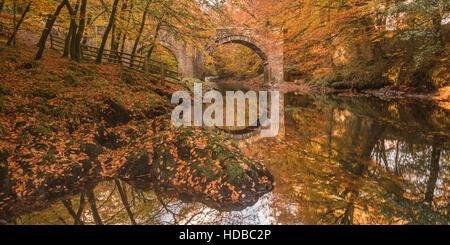 River Dart at Holne Bridge, Dartmoor, near Ashburton, South Devon  during autumn - Stock Image