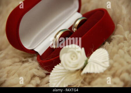 Two gold rings in a red box with - Stock Image