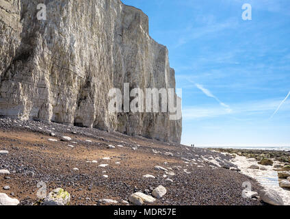 Birling Gap and Seven Sisters chalk cliffs on the East Sussex coast, England - Stock Image