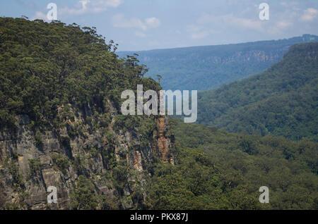 Budderoo Plateau, Budderoo National Park, Southern Highlands, NSW, Australia - Stock Image