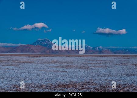 Argentina, Salta province, Puna desert, Tolar Grande, Salar de Arizaro and volcan Aracar - Stock Image