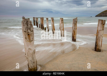 The remains of an old jetty on the beach at St Clair, Dunedin, New Zealand. - Stock Image