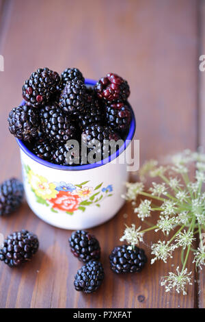 Fresh garden Blackberries in a white vintage cup - Stock Image