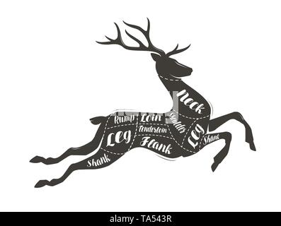 Deer meat cutting. Menu for restaurant or butcher shop. Vector illustration - Stock Image