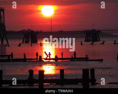 Sheerness, Kent, UK. 20th May, 2019. UK Weather: this evening's sunset in Sheerness in Kent.  Credit: James Bell/Alamy Live News - Stock Image