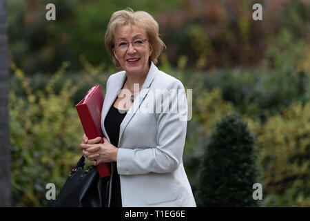London, UK. 26th March 2019, Andrea Leadsom MP PC, Leader of the House of Commons, arrives at a Cabinet meeting at 10 Downing Street, London, UK. Credit: Ian Davidson/Alamy Live News - Stock Image