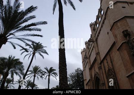 La Lonja Sa Llotja from inside Palma de Mallorca Majorca Spain Balearic Islands Mediterranean - Stock Image